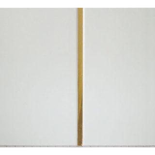 Потолочные белые ПВХ панели «Полоса золото» 2-х секционная